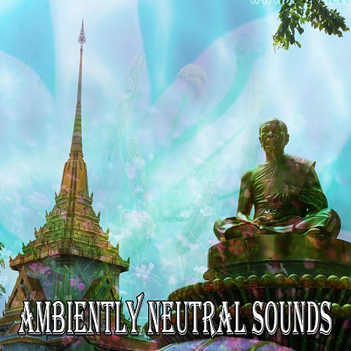 Ambiently Neutral Sounds de Meditación Música Ambiente