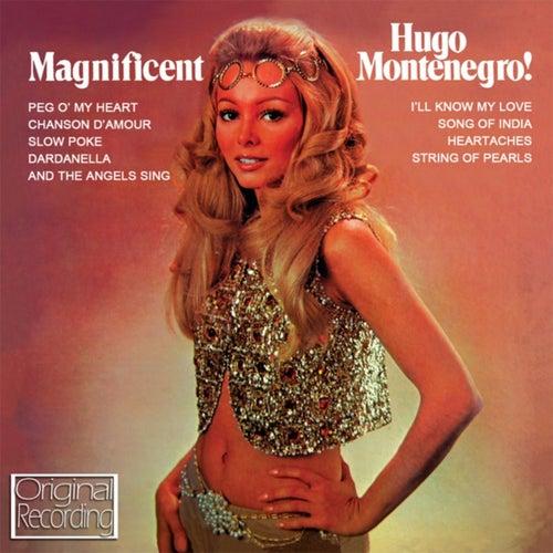 Magnificent by Hugo Montenegro
