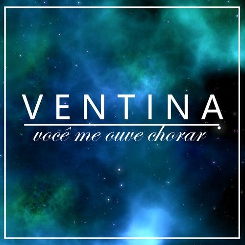 Você Me Ouve Chorar? de Luísa Ventin
