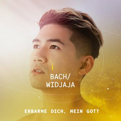Bach: Erbarme dich, mein Gott de Iskandar Widjaja