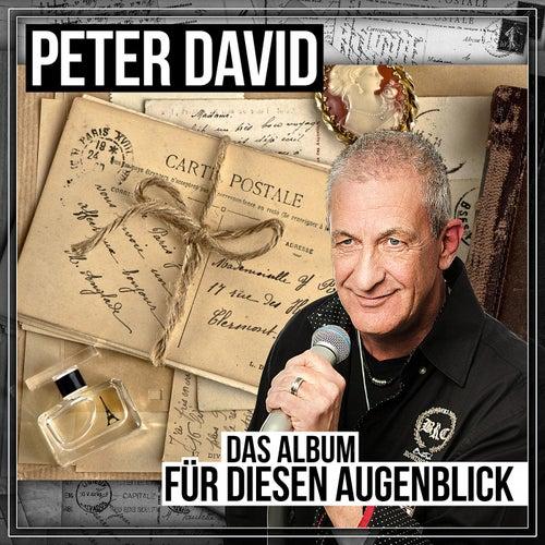 Für diesen Augenblick (Das Album) von Peter David