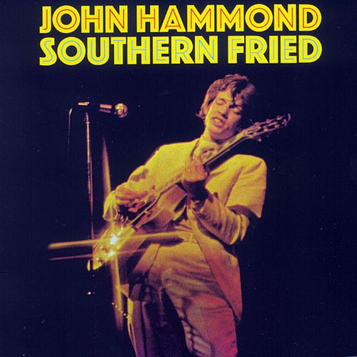 Southern Fried de John Hammond, Jr.