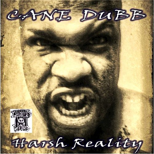 Harsh Reality de Cane Dubb