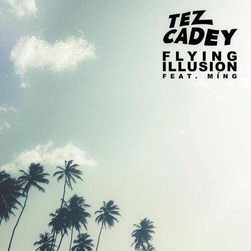 Flying Illusion by Tez Cadey