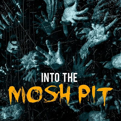 Into the Mosh Pit von Various Artists