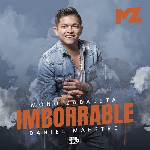 Imborrable de Mono Zabaleta