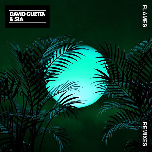 Flames (Remixes) van David Guetta