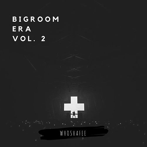 BIGROOM ERA, Vol. 2 de Whoshafee