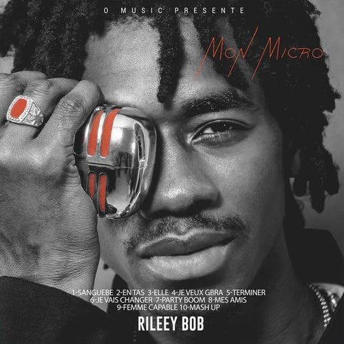 Mon micro by Rileey Bob