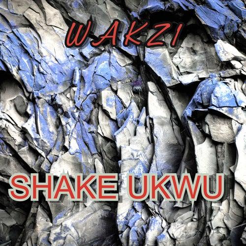 Shake Ukwu de Wakz1