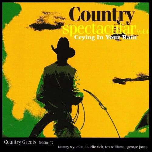 Country Spectacular, Vol. 4 de Various Artists