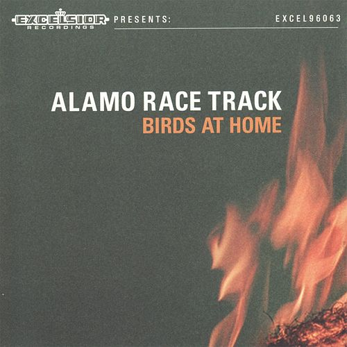Birds at Home by Alamo Race Track