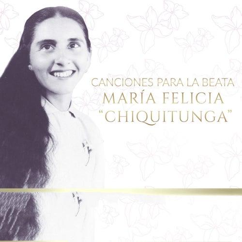 Canciones Para La Beata Maria Felicia Chiquitunga by Various Artists
