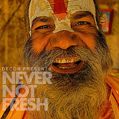Never Not Fresh de Various Artists
