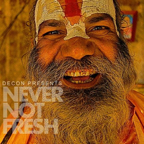 Never Not Fresh von Various Artists