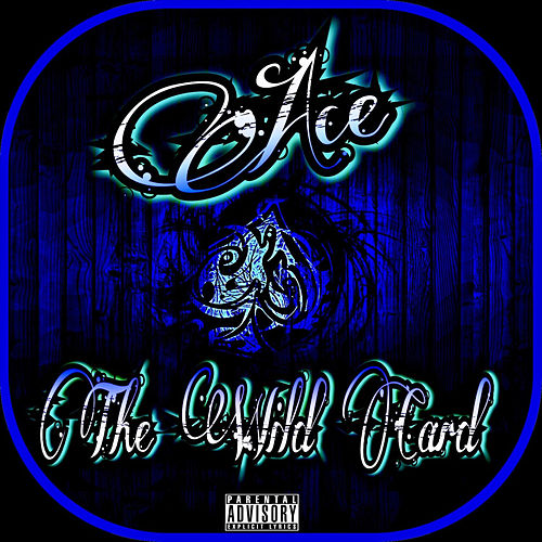 The Wild Card by Ace
