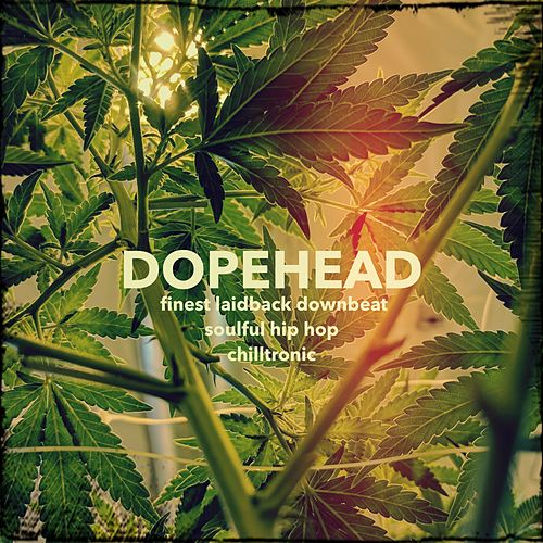 Dopehead von Various Artists