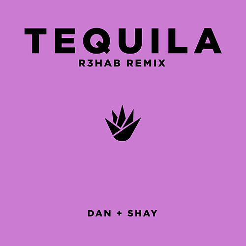 Tequila (R3HAB Remix) by Dan + Shay