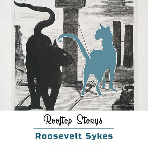 Rooftop Storys by Roosevelt Sykes