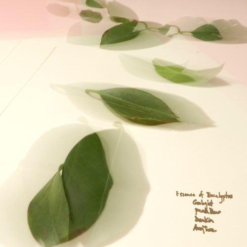 Essence of Eucalyptus by Avey Tare
