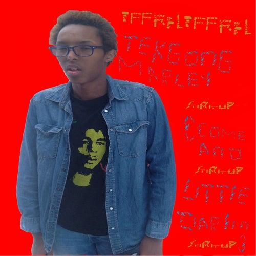Get up Stand up (Stand up for Your Right) [Album Version] de TffRelTffRel TekGong Marley