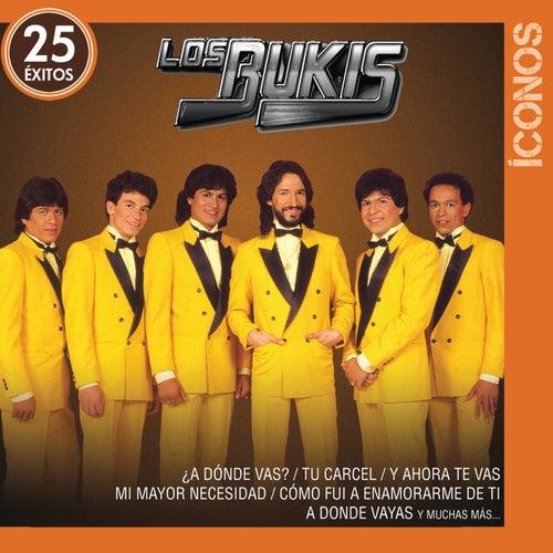 Íconos 25 Éxitos de Los Bukis