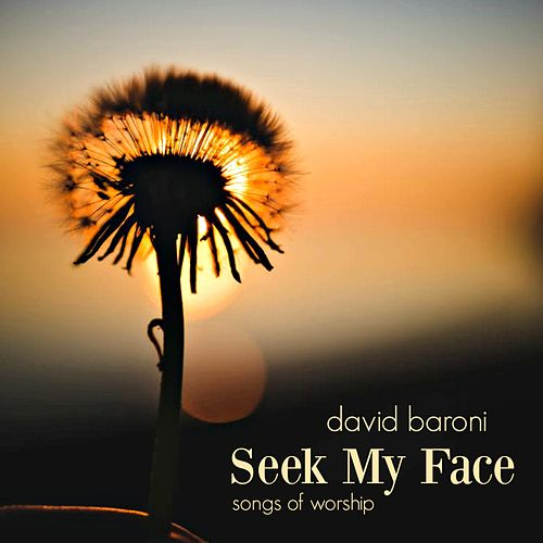 Seek My Face by David Baroni