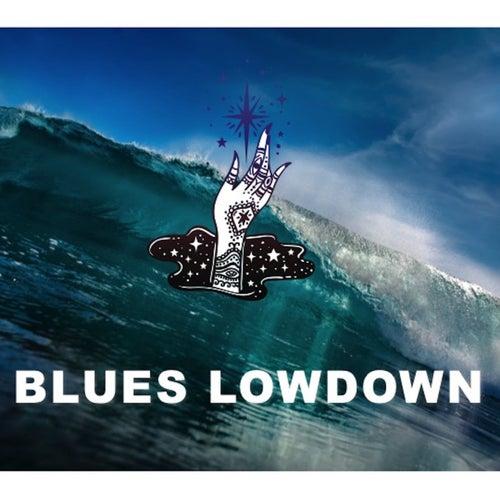 Blues Lowdown de Billy Boy Arnold