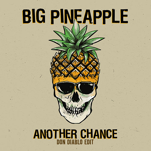 Another Chance (Don Diablo Edit) von Big Pineapple