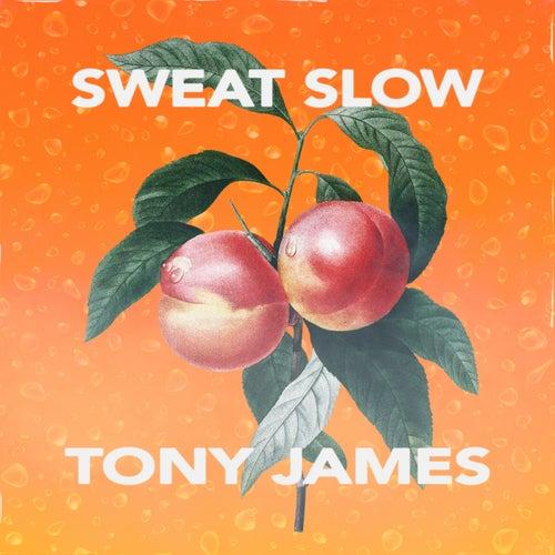 Sweat Slow by Tony James