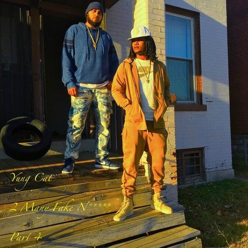 2 Many Fake Niggaz, Pt. 4 by Yung Cat