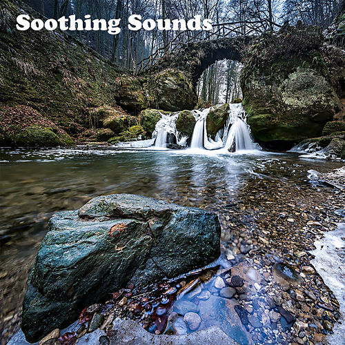 Soothing Sounds de White Noise Babies