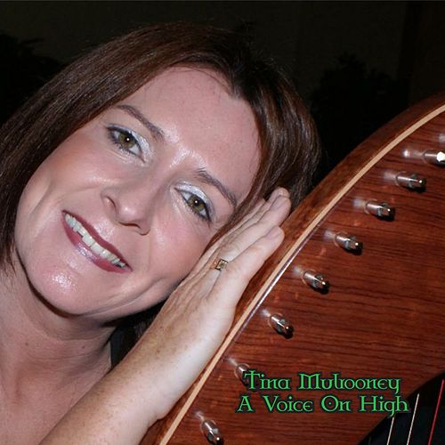 A Voice On High by Tina Mulrooney