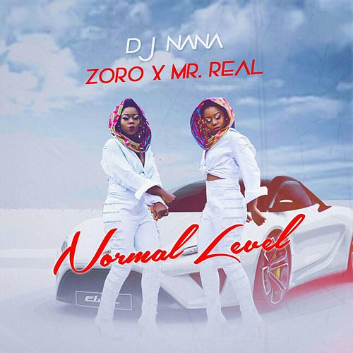 Normal Level by DJ Nana