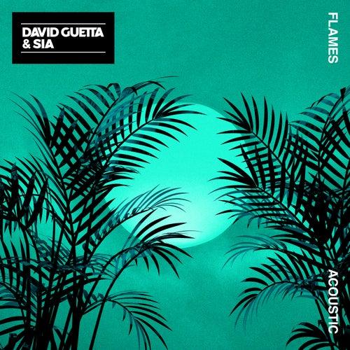 Flames (Acoustic) von David Guetta