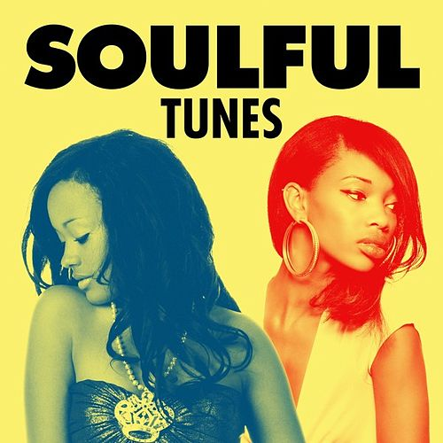 Soulful Tunes de Various Artists