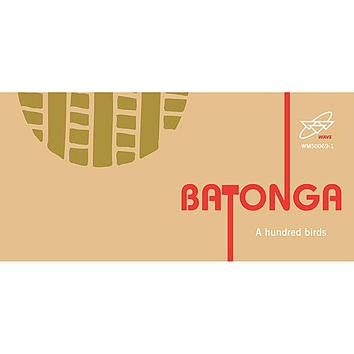 Batonga von A Hundred Birds