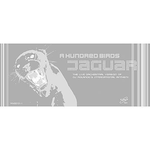 Jaguar von A Hundred Birds