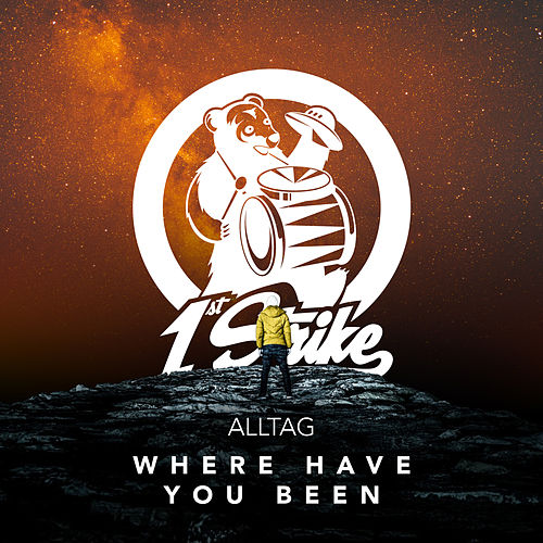 Where Have You Been (Remixes) de Alltag