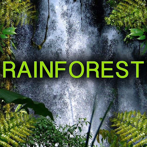 Relaxing Rainforest Sound (Rain And Jungle Animals) by