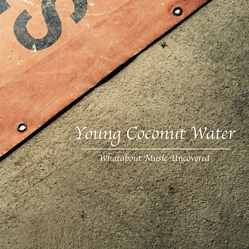Young Coconut Water by Leslie Helpert