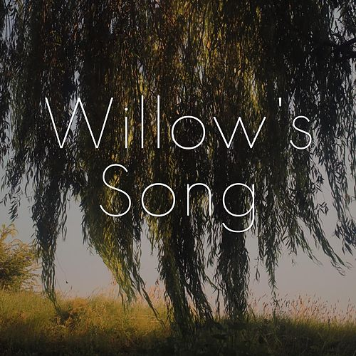 Willow's Song by Matt and Amy