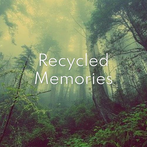 Recycled Memories by Matt and Amy
