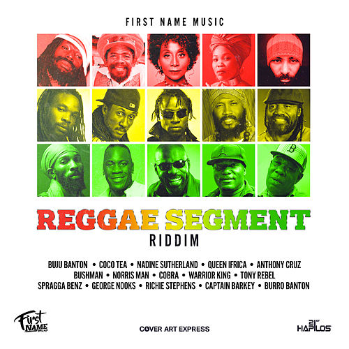 Reggae Segment Riddim by Various Artists