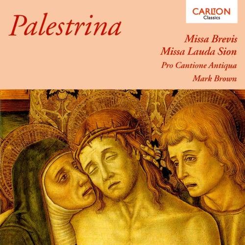 Palestrina: Missa Brevis by Michael Chance