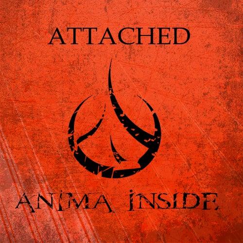 Attached de Anima Inside