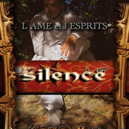 L'âme et l'esprits by Silence