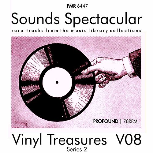 Vinyl Treasures, Series 2, Volume 8 von Various Artists