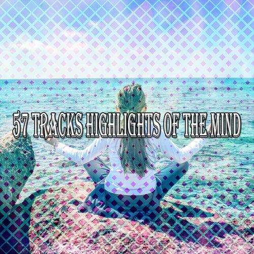 57 Tracks Highlights Of The Mind de Massage Tribe