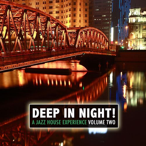 Deep in the Night!, Vol.2 - A Jazz House Experience von Various Artists